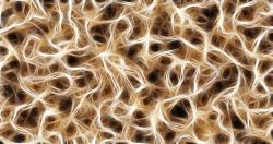 nerves-791393_640